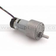 Motoriduttore 12Vdc 66RPM Encoder
